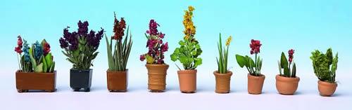 Noch 14012 - Ornamental Plants in Pots