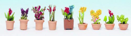 Noch 14080 - Ornamental Plants in Pots