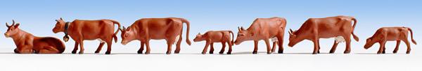 Noch 15720 - Cows, Brown