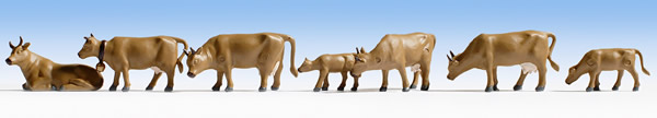 Noch 15722 - Cows, dark brown