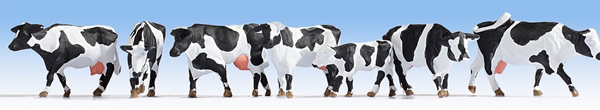 Noch 15725 - Cows, black-white