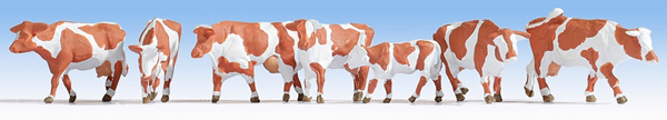 Noch 15726 - Cows, brown-white