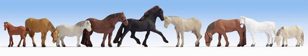 Noch 15761 - Horses