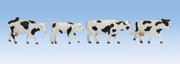 Noch 17900 - Cows black-white