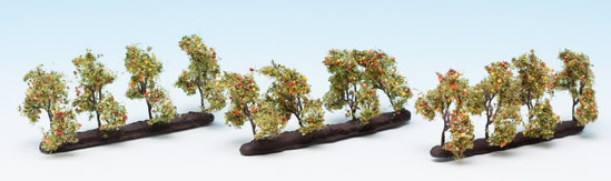 Noch 21532 - Plantation Trees with Apples
