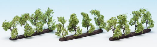 Noch 21535 - Plantation Trees