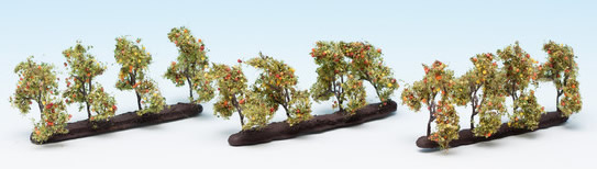 Noch 21537 - Plantation Trees with Apples