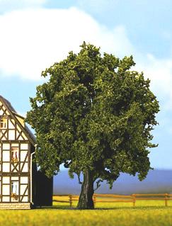 Noch 21760 - Oak