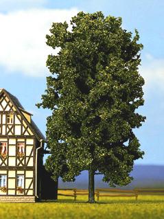 Noch 21800 - Chestnut Tree