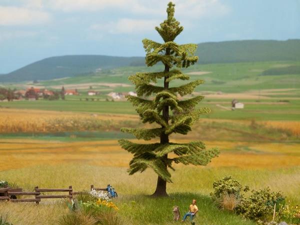 Noch 21833 - Spruce Tree