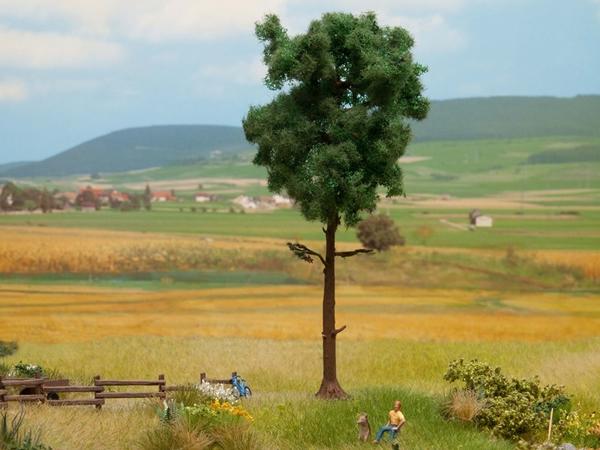 Noch 21914 - Pine Tree