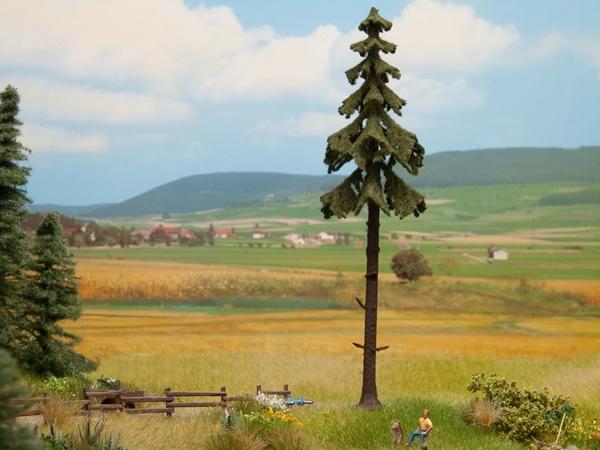 Noch 21927 - High Trunk Spruce Tree