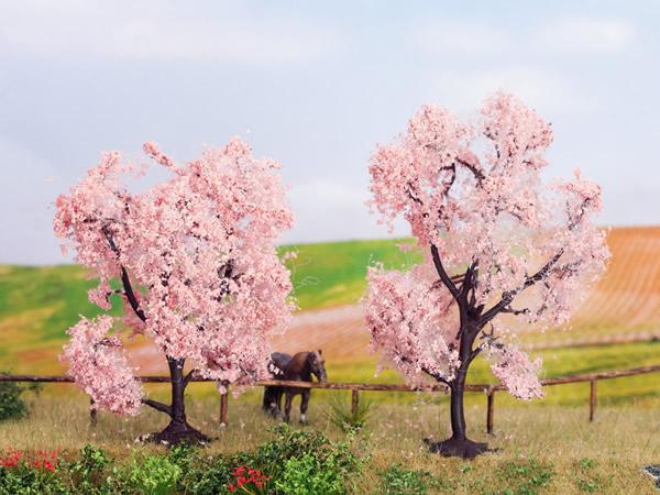 Noch 21996 - Almonds