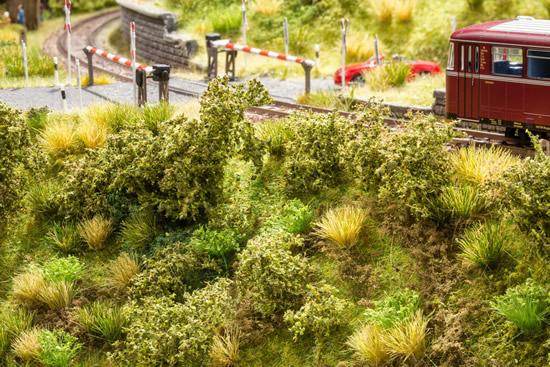 Noch 23102 - Embankment Vegetation