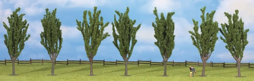 Noch 25098 - Poplars, 7 pcs., approx. 12 cm high