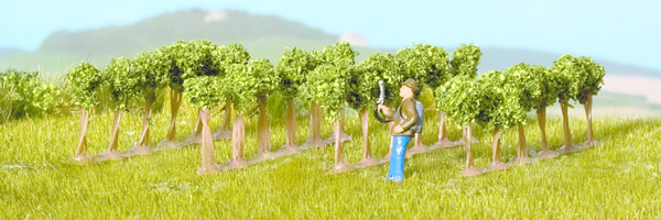 Noch 25550 - Vines