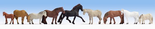 Noch 36761 - Horses