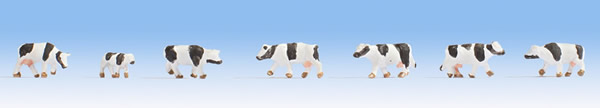 Noch 44250 - Cows, black-white