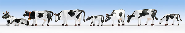 Noch 45721 - Cows, black-white