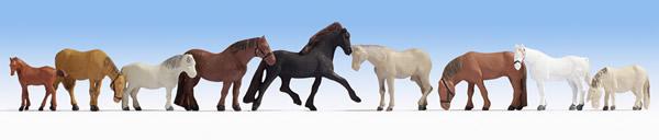 Noch 45761 - Horses