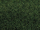 Grass Mat, dark green, 120 x 60 cm