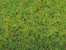 Flowered Grass Mat, 120 x 60 cm