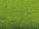 Grass Mat Spring Meadow, 200 x 120 cm