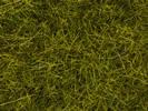 Meadow Mat, Meadow, 6 mm