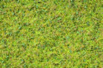 Master Grass Blend Cow Pasture, 2,5 - 6 mm