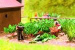 Laser-Cut minis Rhubarb