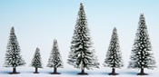 Snow Fir Trees, 25 pieces, 3.5 - 9 cm high