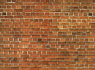 Carton Wall Red Brick