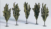 Chestnut Trees 3 Pcs