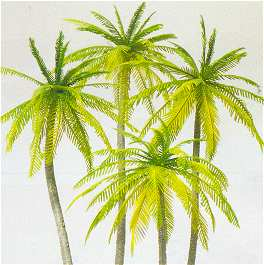 Preiser 18600 - Palm trees 4/