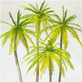 Preiser 18600 - Palm trees 4/