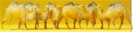 Preiser 20383 - Camels  2-Hump 6/