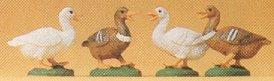Preiser 47077 - Ducks                  4/
