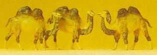 Preiser 79711 - Camels