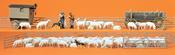 Shepherd w/Flock & Access