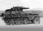 SdKfz 250/8 nA w/SPG